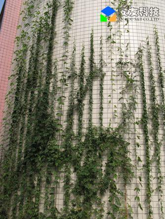 使用了安友分段拉丝式墙面绿化系统.
