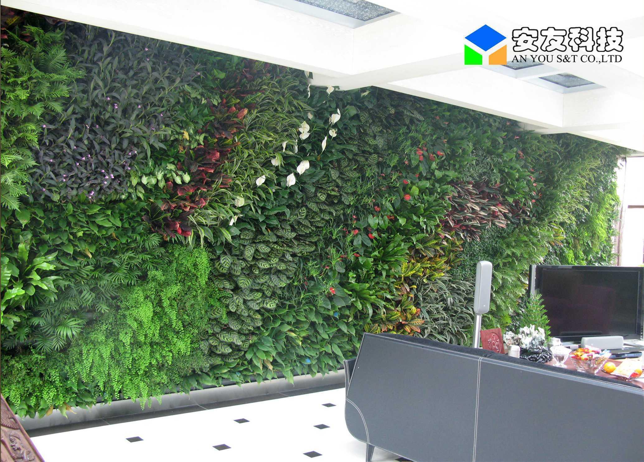 室内绿化-墙面绿化|垂直绿化|高架桥绿化|武汉市安友