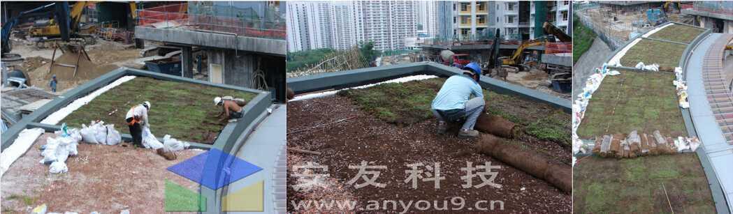净化雨水,可生物降解,适用于任何种类的屋顶及斜坡,夏天隔热,冬天保