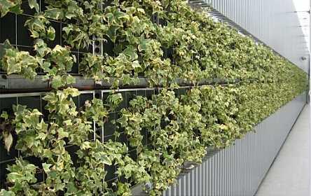 拼块式墙面绿化2