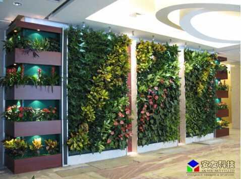 垂直绿化生态植物墙_工程实例