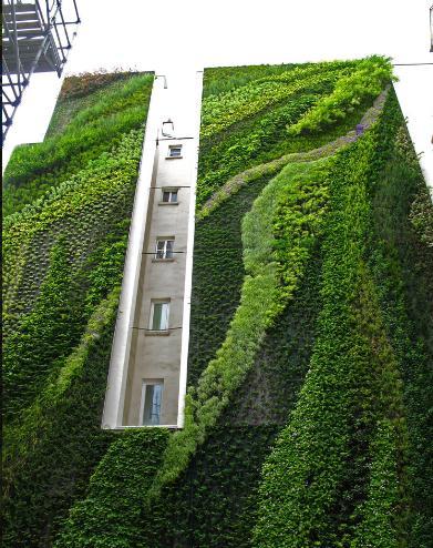 垂直绿化植物墙有效工作寿命不长外形也
