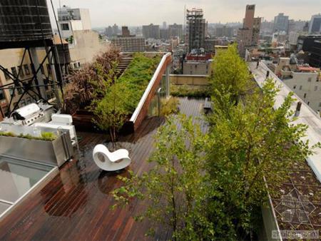 别墅庭院景观设计中植物的叶片,花朵,茎干及硬质的造园材料都有其特殊